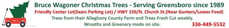 Bruce Wagoner Christmas Trees Tel - 336-449-5532
